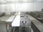 Tables, cleaning tanks, chutes, belt conveyors in the processing room